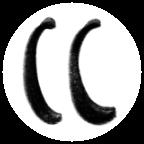 CasoCover Logo